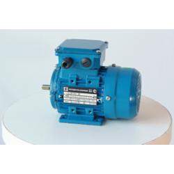 Электродвигатель АИР 56 А4 0,12 кВт*1500 об/мин. (1081)